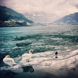 Zell am See (13)