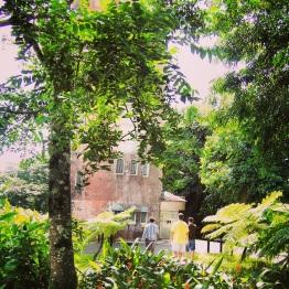 El Yunque 16