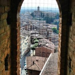 Siena (4)