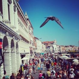 Venice (13)
