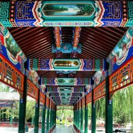 Beijing (224)