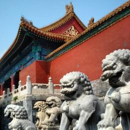 Beijing (241)