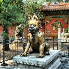 Beijing (262)