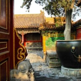 Beijing (293)