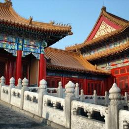 Beijing (305)