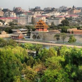 Beijing (318)