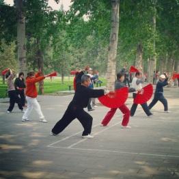 Beijing (354)