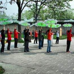 Beijing (361)