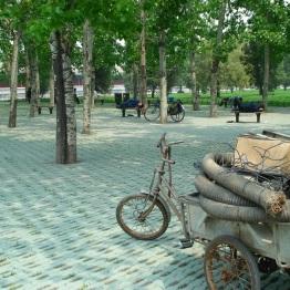 Beijing (384)