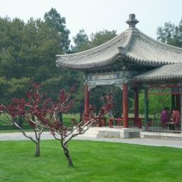 Beijing (389)