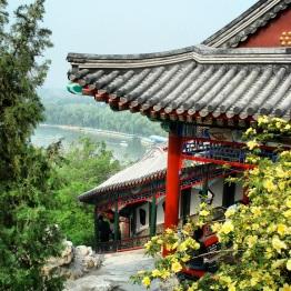 Beijing (426)