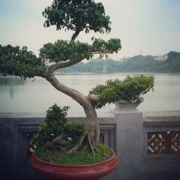 Hanoi (54)
