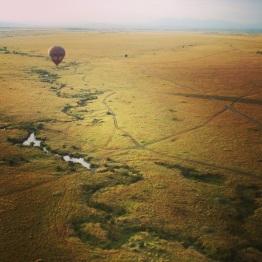 Maasai Mara 15