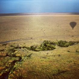 Maasai Mara 18