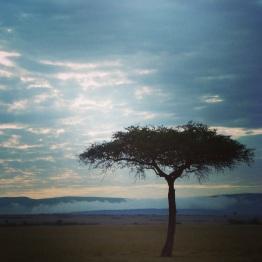 Maasai Mara 60