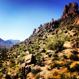 Scottsdale (4)