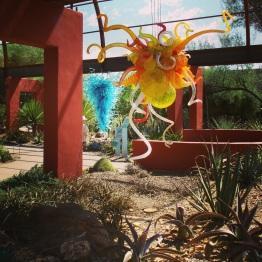Phoenix (11)