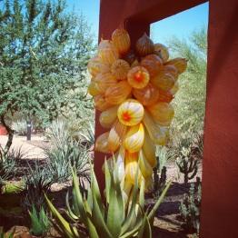 Phoenix (7)