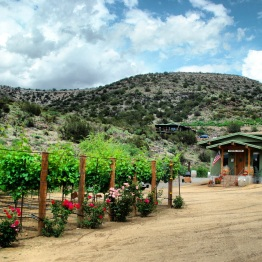Verde Valley (10)