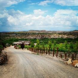 Verde Valley (8)