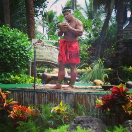 Oahu (19)