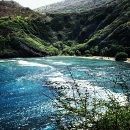 Oahu (6)