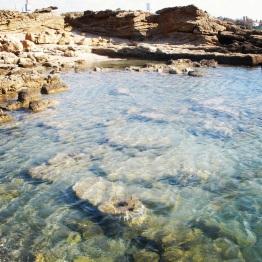 Caesarea (36)