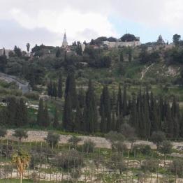 Jerusalem (30)