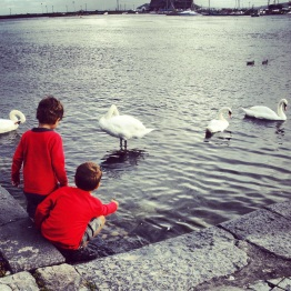 Galway (6)