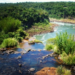 Iguazu Falls (10)