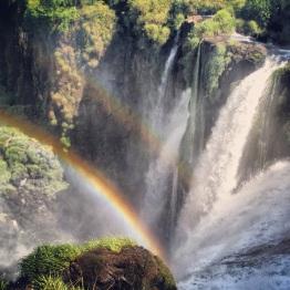 Iguazu Falls (19)