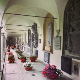 Lucerne (8)