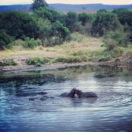 Maasai Mara 40