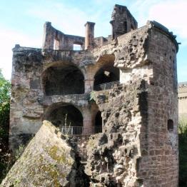 Heidelberg (9)