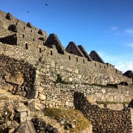 Machu Picchu (18)