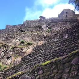 Machu Picchu (40)