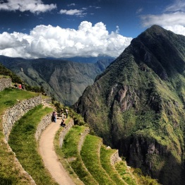 Machu Picchu (63)