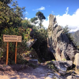 Machu Picchu (94)