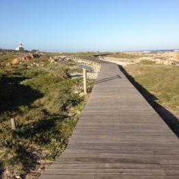 Cape Agulhas (1)
