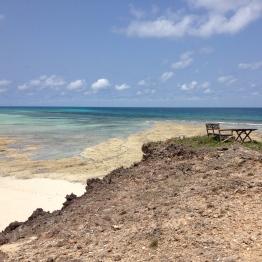 Chumbe Island (19)