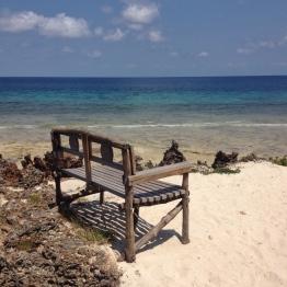 Chumbe Island (8)