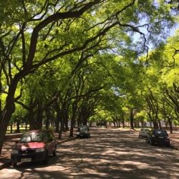 Montevideo (27)
