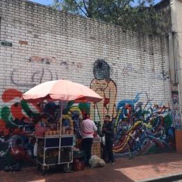 Bogota (23)