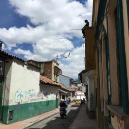 Bogota (36)