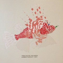 Lion Fish by Shane dready Aquart